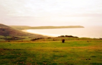 beach weddings north devon woolacombe black cloud hill d
