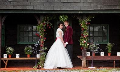 Winter weddings devon deer park 3s