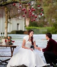 Winter weddings devon deer park 4s