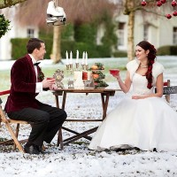 Winter weddings devon deer park 5